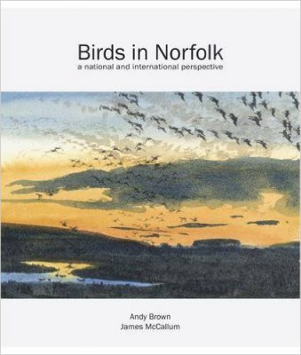 birds-in-norfolk