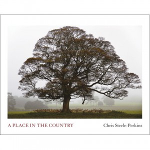 PLACE_IN_THE_COUNTRY